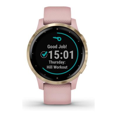 Garmin Vivoactive hodinky 010-02172-32