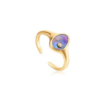 Ania Haie 925 Sterling Zilveren Goudkleurige Turning Tides Ring AH-R027-01G