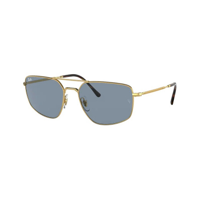 Ray-Ban Arista Zonnebril RB3666191326