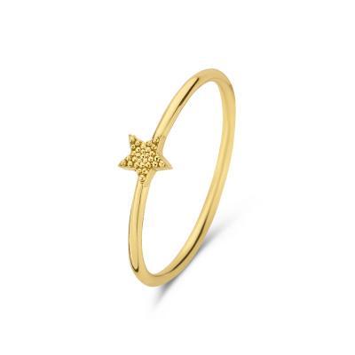 Selected Jewels Julie Esthée 925 Sterling Zilveren Goudkleurige Ring SJ300015